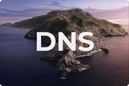 DNS là gì, hoạt động ra sao, Domain là gì??