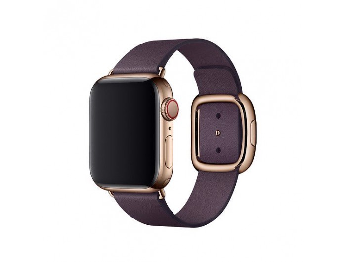 Apple 40mm Modern Buckle